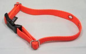 Neon Orange Nylon Replacement Dog Collar