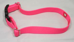 Neon Pink Nylon Replacement Dog Collar