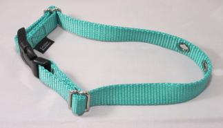 Teal Nylon Replacement Dog Collar