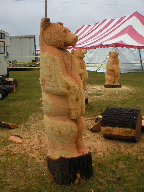 Michigan chainsaw carving florida carver tree